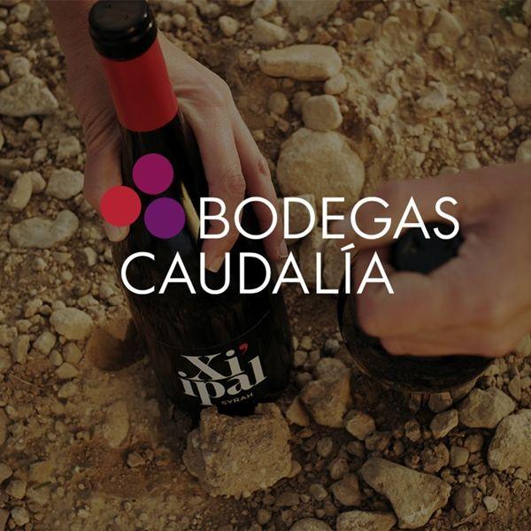 Bodegas Caudalía. Historia y diferencia.