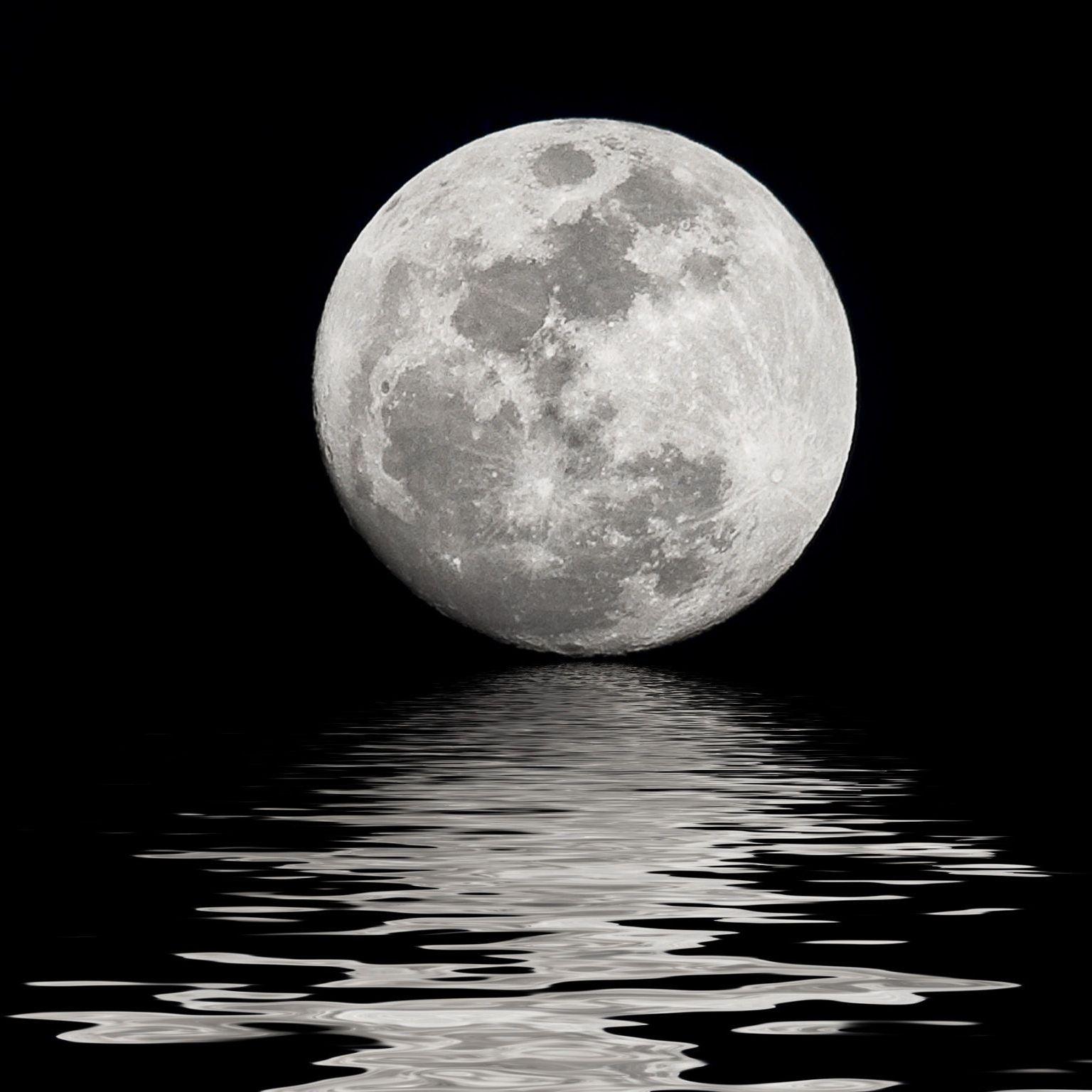 La Luna y el Pinot Noir.